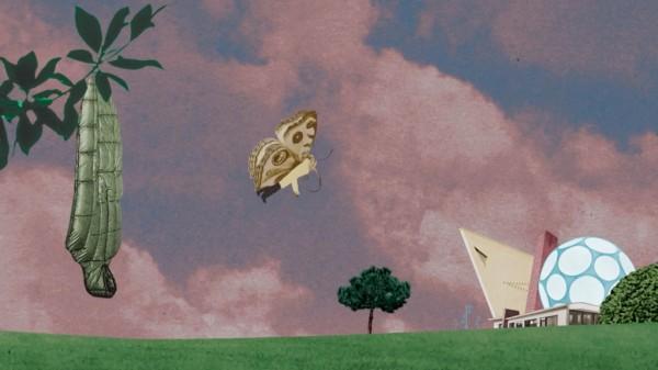 Les animaux domestiques de Jean LECOINTRE : le papillon
