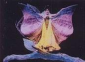 Métamorphoses d'un papillon - Flipbook d'après Gaston VELLE (1904) - Image 4