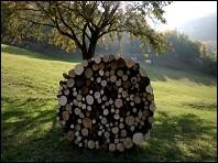 Bois (série Campagne Art) - a film by Sébastien FAU - France - 2007
