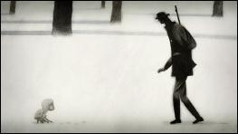 Feral - a film by Daniel SOUSA - image