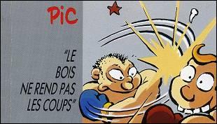 LE BOIS NE REND PAS LES COUPS un flipbook par PIC