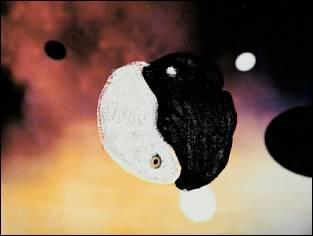 AU BAL DES PENDUS - Un film de Johan POLLEFOORT - image 3