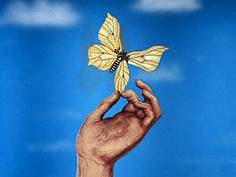 Papillon - un film de Fyodor KHITRUK