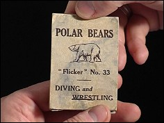 Polar Bears Diving and Wresting - un flipbook anonyme