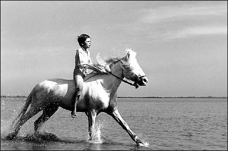 CRIN BLANC - un film d'Albert LAMORISSE (1953) - image