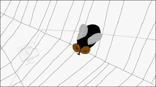 SPIDER WEB (Toile d'araignée) - Photogramme