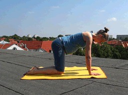 YOGA for pregnant women 1 - image 2