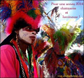 Voeux de l'année 2014 par Anne BARTHELEMY (France)
